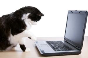 Typing Tink